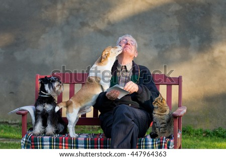 Senior man with dogs and cat on his lap on bench #447964363
