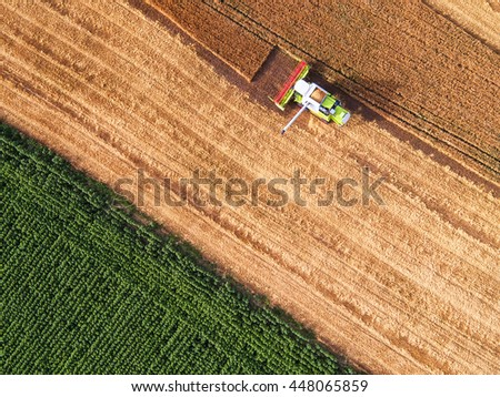 Aerial view on the combine working on the large wheat field #448065859