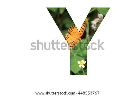 "The letter ""Y"" with butterfly background inside #448553767"