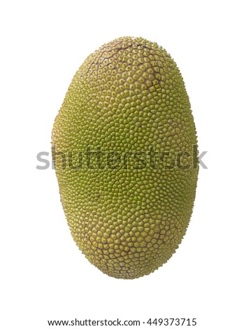 jack fruit thorns isolate on white background. Tropical fruit. Golden yellow and peel small button consecutive yellowish green pattern skin with thorns.  #449373715