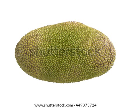 jack fruit thorns isolate on white background. Tropical fruit. Golden yellow and peel small button consecutive yellowish green pattern skin with thorns.  #449373724