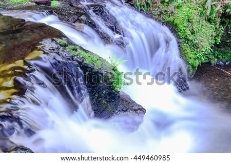 Spectacular view of Gorton Creek Falls in the Columbia River Gorge, Oregon, US. A stunning two-tiered 149ft waterfall and several smaller falls with moss covered, lush rainforest surrounding the creek #449460985