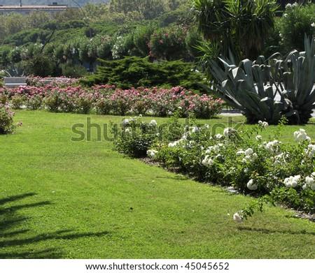 garden in the town #45045652