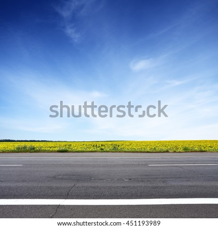 Road and sun flowers field with blue sky above. Summer landscape #451193989
