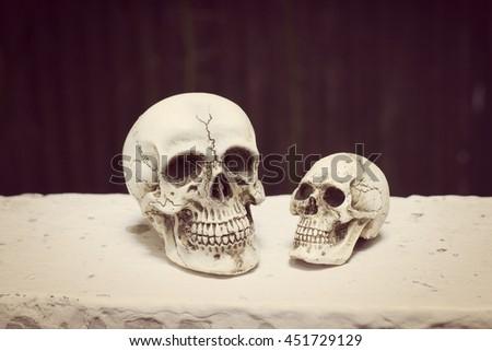 Human skull  in vintage tone. still life style #451729129
