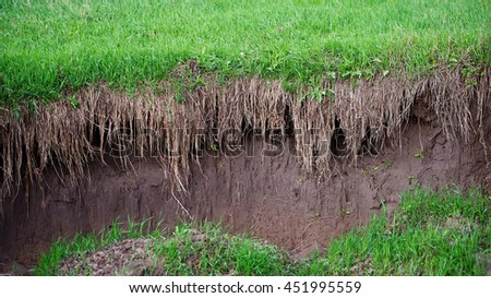Soil Erosion in the Agricultural Field.  #451995559