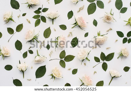 Pattern of light pink roses and green leaves on white background. Flat lay, top view, isolated on white background #452056525