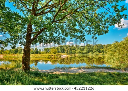 River Landscape With Green Forest Woods On Coast And Reflections Of Trees In Water. Summer Sunny Day. Blue Sky. Nobody. Oak Tree On Foreground. #452211226