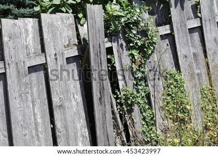 Old Fence Overgrown with Plants #453423997