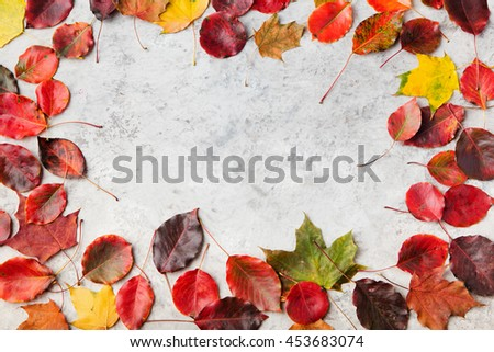 Colorful autumn leaves on a grey stone background. Top view. Copy space #453683074