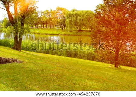 Beautiful summer landscape with green grass and soft sunlight #454257670