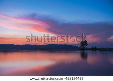 Tree in the lake light evening twilight, Colorful landscape #455154433