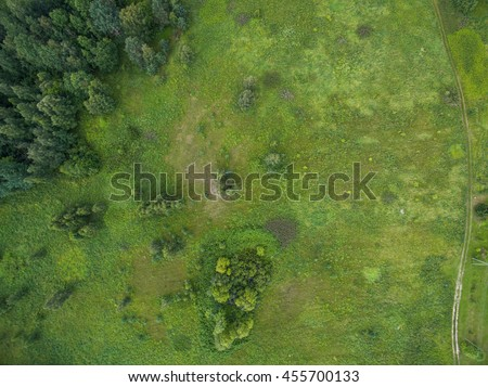 Aerial forest view at summer time with good weather #455700133
