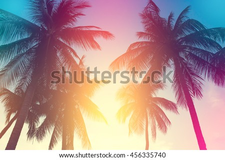 coconut tree at tropical coast,made with Vintage Tones,Warm tones  #456335740