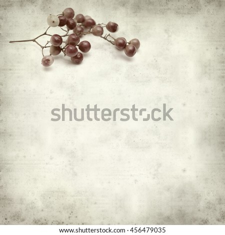 textured old paper background with pink peppercorn berries #456479035
