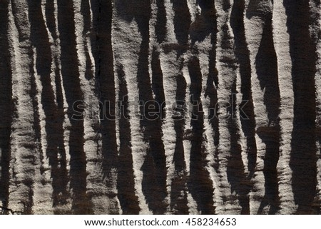 Surface of carbonate rock with weathering structures (micro karst), Tertiary age from Italy. #458234653