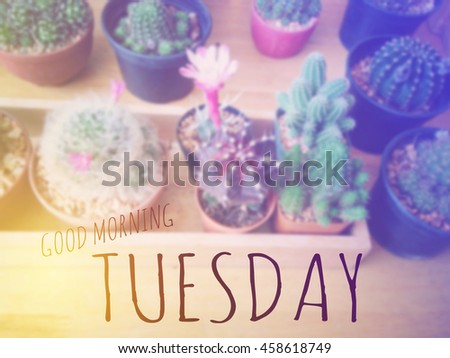 Inspirational Quote : Good morning Tuesday over blur background