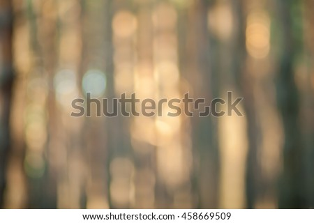 Blurry nature wallpaper. Pine forest bokeh background. Green defocused backdrop for your design. #458669509