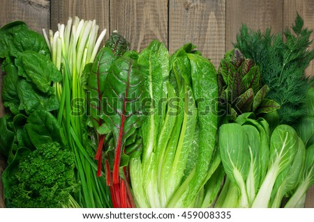 Spring vitamin set of various green leafy vegetables on rustic wooden table. Top view point. #459008335