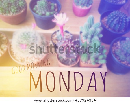 Inspirational Quote : Good morning monday over blur background of cactus