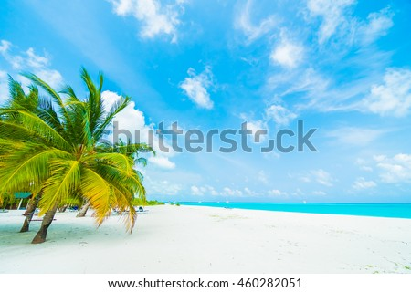 Beautiful tropical beach and sea with coconut palm tree on blue sky in Maldives island - Boost up color Processing #460282051