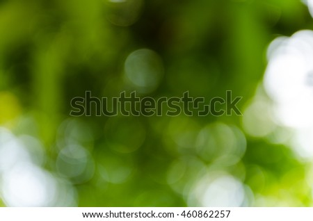 Green bokeh out of focus background from nature forest #460862257