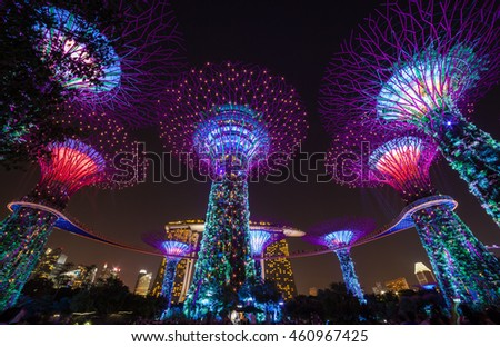 SINGAPORE - JUNE 7, 2016 Night View of The Supertree at Gardens by the Bay sands on 7 June 2016 #460967425