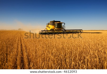 A modern combine harvester working a wheat field #4612093