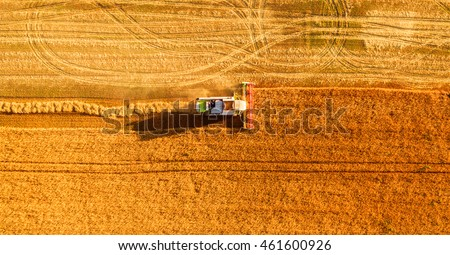 Harvester machine working in field . Combine harvester agriculture machine harvesting golden ripe wheat field. Agriculture. Aerial view. From above. #461600926