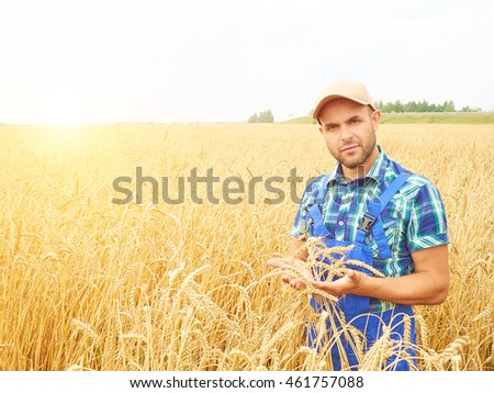 Farmer in a plaid shirt controlled his field.. Shows the wheat harvest. Agriculture. #461757088