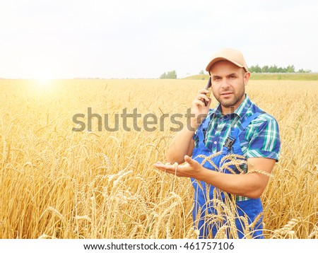 Farmer in a plaid shirt controlled his field. Talking on the phone. Wheat harvest. Agriculture. #461757106