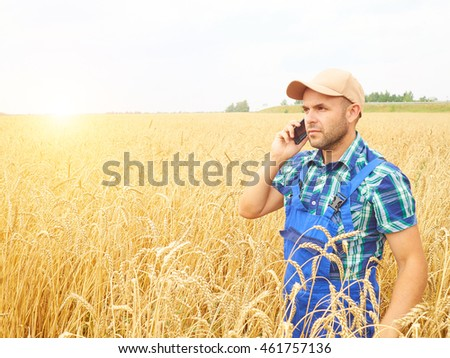 Farmer in a plaid shirt controlled his field. Talking on the phone. Wheat harvest. Agriculture. #461757136