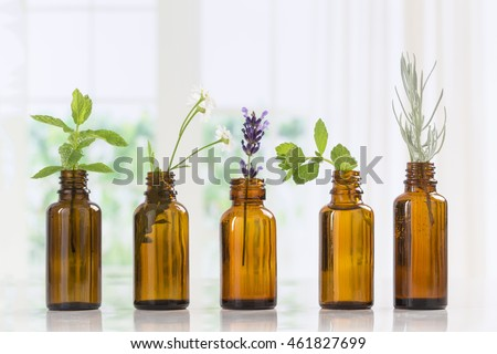 Brown Bottles of essential oil with fresh herbs Royalty-Free Stock Photo #461827699