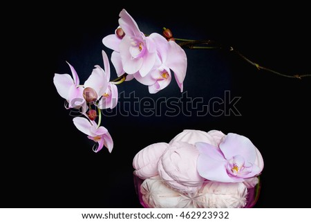 The Phalaenopsis Orchid and marshmallows in a glass vase. Pink and white still life on black background. Valentine's day holiday. composition #462923932