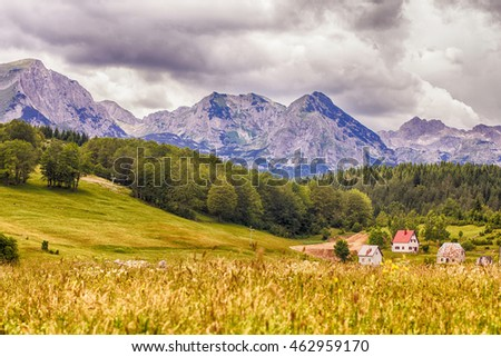 Nature summer mountain landscape , green forest and meadow. National park Durmitor, Montenegro, Europe. #462959170
