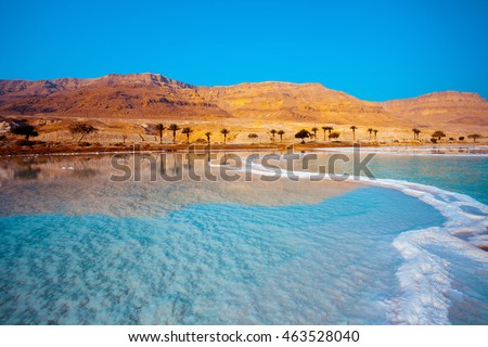 Dead Sea seashore with palm trees and mountains on background Royalty-Free Stock Photo #463528040