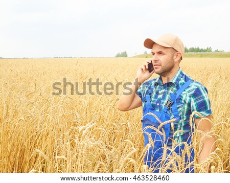Farmer in a plaid shirt controlled his field. Talking on the phone. Wheat harvest. Agriculture. #463528460