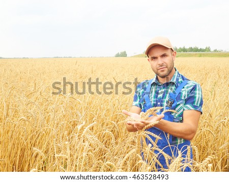 Farmer in a plaid shirt controlled his field.. Shows the wheat harvest. Agriculture. #463528493