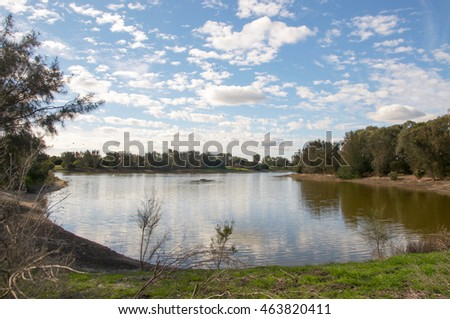 Natural wetland reserve with native flora under a blue sky with clouds in Western Australia/Wetland Reserve/Western Australia #463820411