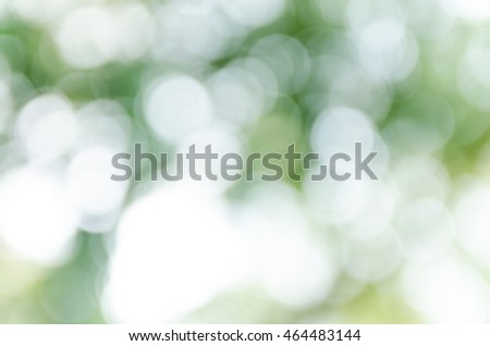 green bokeh abstract light background #464483144