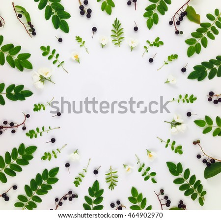 Colorful bright pattern of leaves, berries and flowers on white background. Flat lay, top view with copy space #464902970
