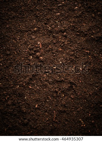 Texture of soil #464935307