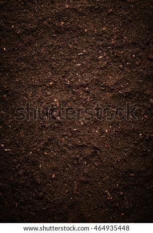 Dirt texture #464935448