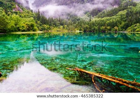 Jiuzhaigou National Park, Sichuan, China #465385322
