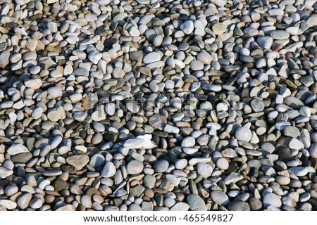 texture of beautiful dry round colored sea pebbles on pebble beach foreground closeup #465549827