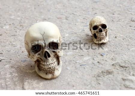 human skull on cement floor #465741611