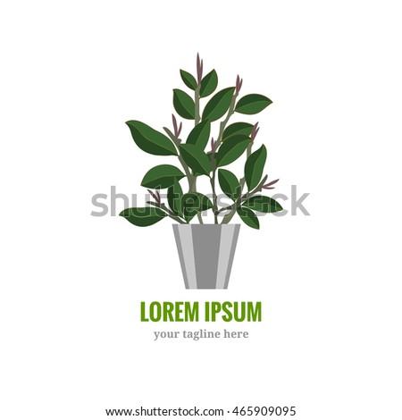 House plant logo. Home garden symbol. Background for logotype. Vector illustration isolated on white background #465909095
