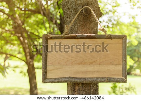 wood tag on tree in park . blank on wood tag for message of concept . lens flare effect and warm tone . shallow depth of field .
