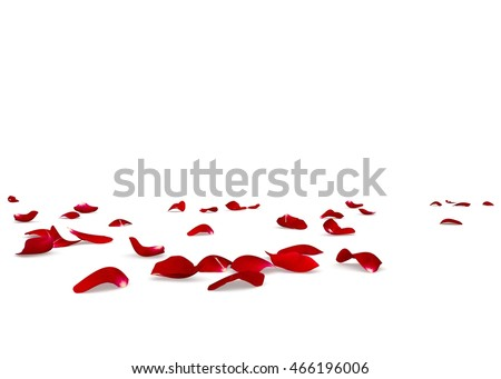 Red rose petals scattered on the floor. Isolated white background Royalty-Free Stock Photo #466196006