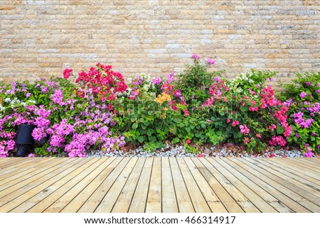 Old hardwood decking or flooring and green plant in garden decorative #466314917